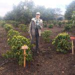 "DigLibArts-sponsored ""California Grown"" Coffee-Avocado Project Trailer"